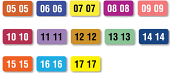 Year Color Coding Labels